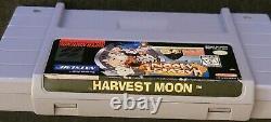 Harvest Moon Super Nintendo Snes 1997 Authentique, Bon État Avec Boîtier En Plastique